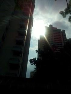 The morning sunshine