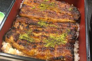 Japanese eel dish