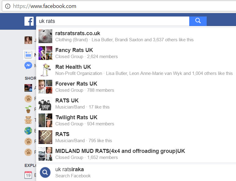pet rat UK facebook groups