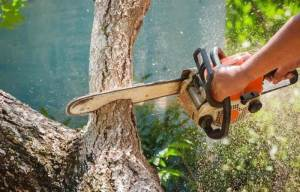 Why Does My Chainsaw Cut Crooked