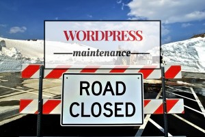 Wordpress Maintenance Tips for Speed Reliability & Security