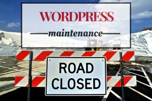 Wordpress Maintenance Tips for Speed & Security