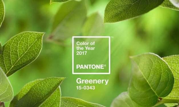Top χρώμα του 2017 απο την Pantone | Greenery
