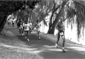 runners along a trail