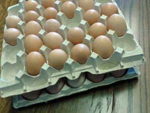 Two flats of eggs