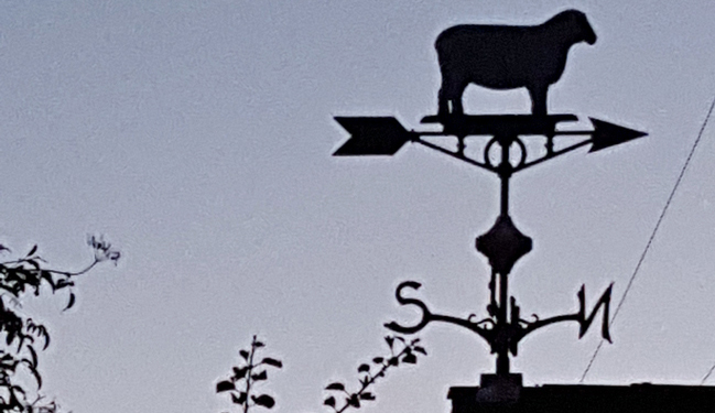 sheep weather vane