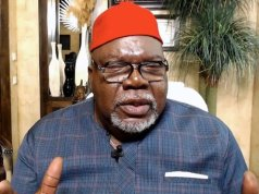 My Ancestors Were Igbos...I Eat Fufu, Jollof Rice In Nigeria - TD Jakes Makes New Revelation