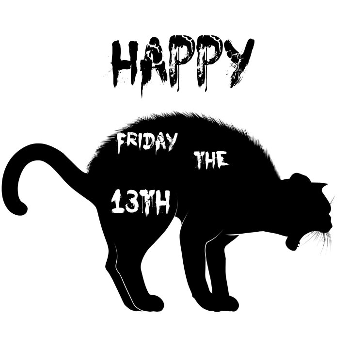 Friday the 13th cat