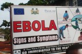 Fifth person dies in Guinea Ebola flare-up