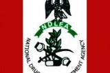 NDLEA Arrest 234 Suspects, Seize 7,550kg Indian Hemp