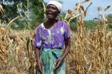 50 Million Africans Face Hunger After Crops Fail Again
