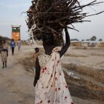 A young woman en route to the UN base outside Bentiu in Unity state, South Sudan, after collecting firewood. Such expeditions leave women and girls vulnerable to attack. Photograph: Tristan Mcconnell/AFP/Getty Images