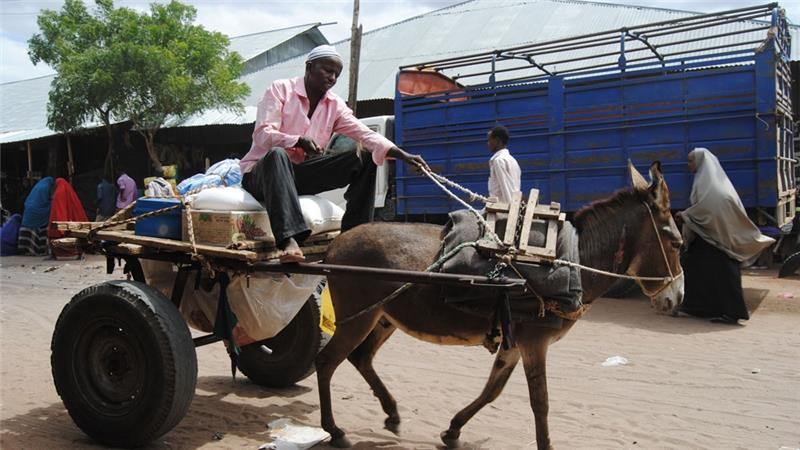 A man ferries goods from the market in Hagadera camp in Dadaab [Anthony Langat/Al Jazeera]