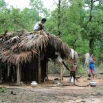 A family builds a shelter in Khammam district, having fled the Maoist insurgency-hit Chhattisgarh state. Photograph: Noah Seelam/AFP/Getty Images