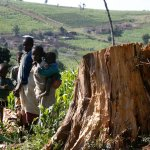Ogiek people by a tree stump in the Mau forest. Kenya's attempts to protect its forests are undermining the rights of indigenous people living on the land. Photograph: Thomas Mukoya/Reuters