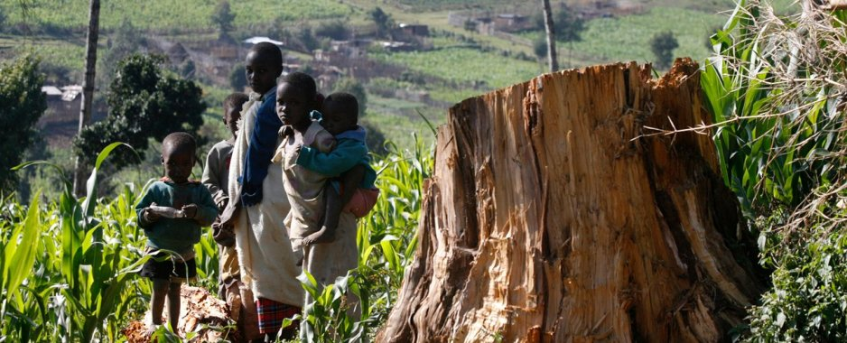 New Land Law To Promote Welfare, Dignity Of Malawi Women