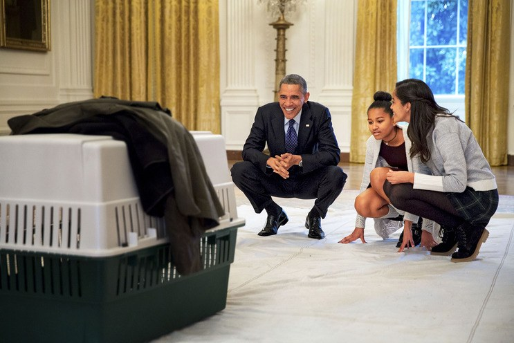 "The Perk of a ""45-Second Commute"" The President has spent ""a lot more time"" watching Sasha and Malia (here, meeting Mac the Turkey in 2014) grow into women."