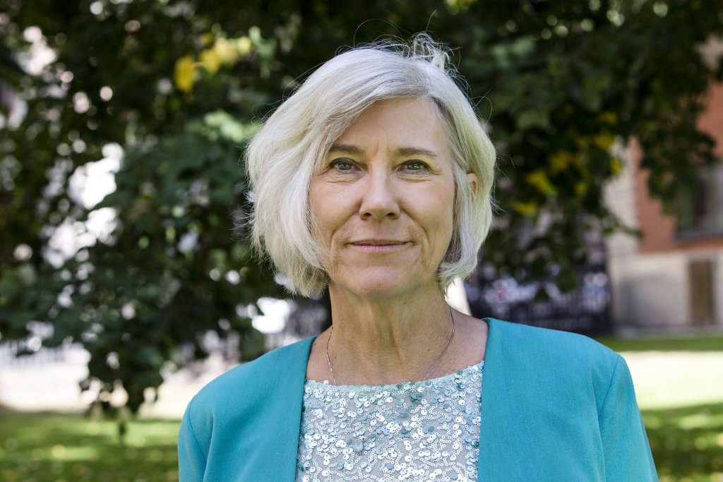 Prof Joan Rose received the world's most prestigious water prize at a conference in Stockholm this week. Photograph: Mikael Ullén/Stockholm International Water Institute