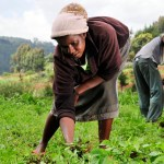Female-Farmers-