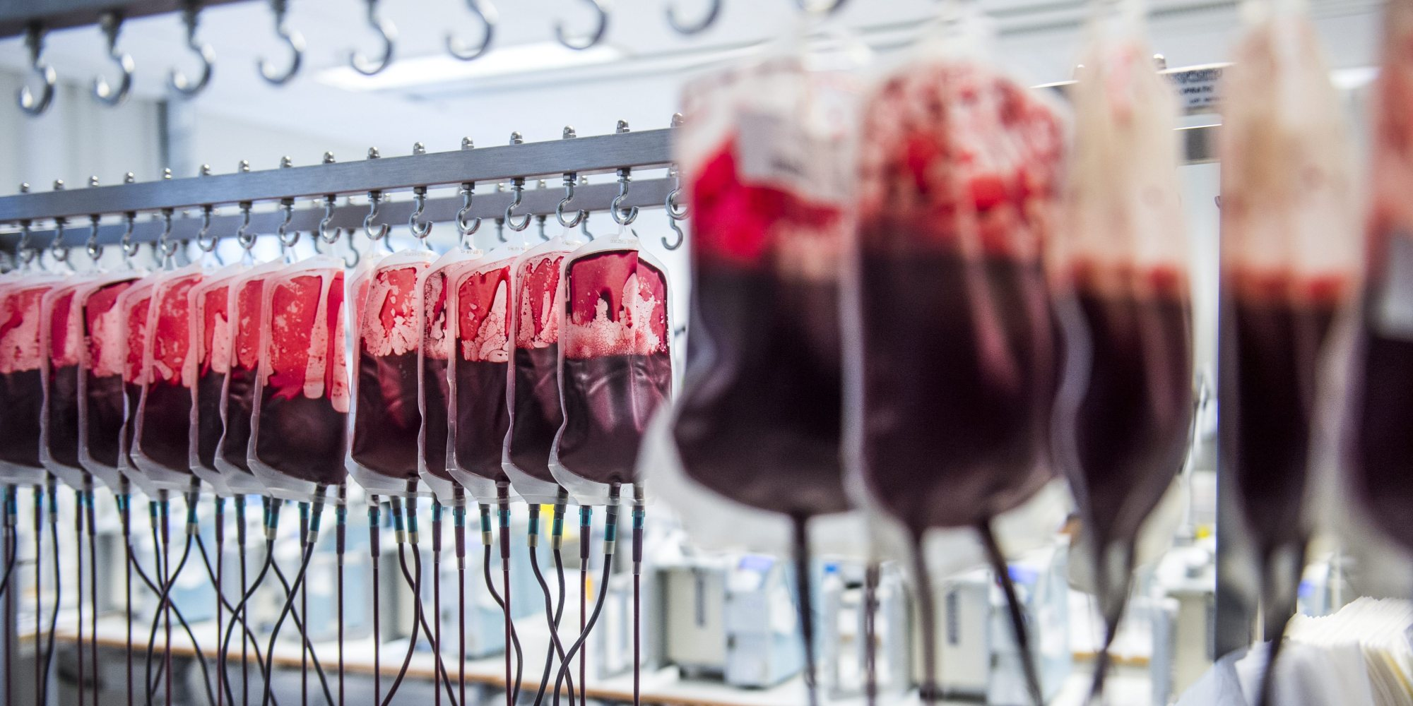 STOCKHOLM 20160406 The blood bank of the Karolinska University hospital in Huddinge, Sweden. Bood bags hangs to isolate white blood cells.   Foto: Marcus Ericsson / TT / Kod 11470 blood bags, blood donor, blood type, blood group,