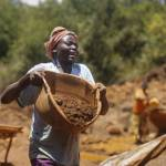A woman carries a basin full of ore to be washed at one of the gold mining sites in Macalder, Migori county, western Kenya, 29 February 2016.