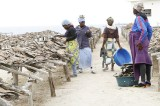 Women Processors Increase Dry Fish Production In Angola
