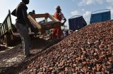 Unwanted Cameroon Cocoa Is Said to Ruffle Latest London Delivery