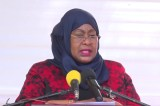 Vice President, Samia Suluhu Hassan Calls for Concerted Efforts In Ending Gender Violence
