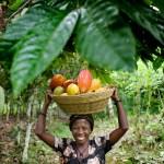 cocoa-farmer-woman-ghana