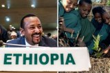 Refugees In Ethiopia's Tigray Set To Run Out Of Food: U.N.