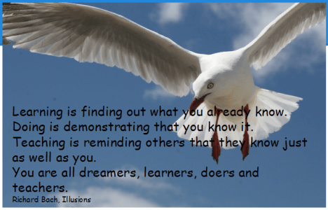 seagull hovering against a clear blue sky with text that saysLearning is finding out what you already know. Doing is demonstrating that you know it. Teaching is reminding others that they know just as well as you. You are all dreamers, learners, doers and teachers. Richard Bach, Illusions