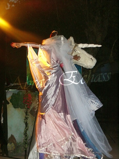 le songe de loeridis echassiers feeriques contes et merveilles spectacle fantastique parade animation elfes fees dragon loup echasses poes (24)