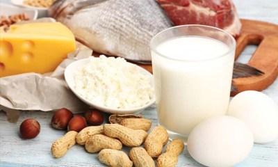 protien-food