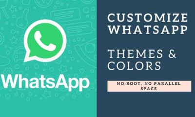 how to Customize WhatsApp Themes and Colors
