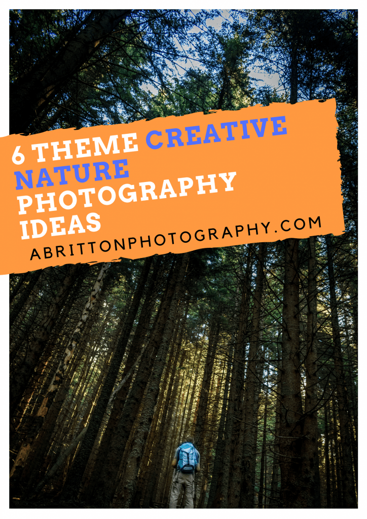 6 Theme Creative Nature Photography Ideas