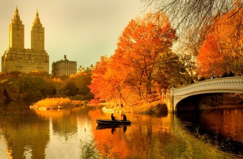 autumn-nyc