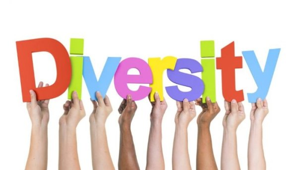 "Training course - ""Embracing Diversity""- Training course on diversity management - Germany - abroadship.org"