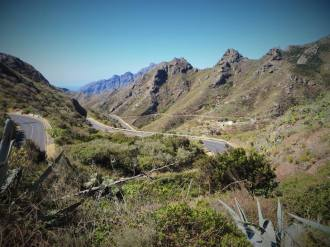 Up into the mountains at Parque Rural Anaga, Tenerife