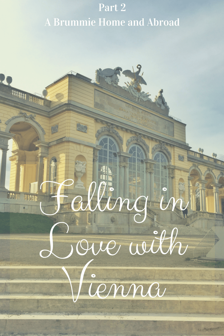 Falling in Love with Vienna (Part 2) - Pin Me!