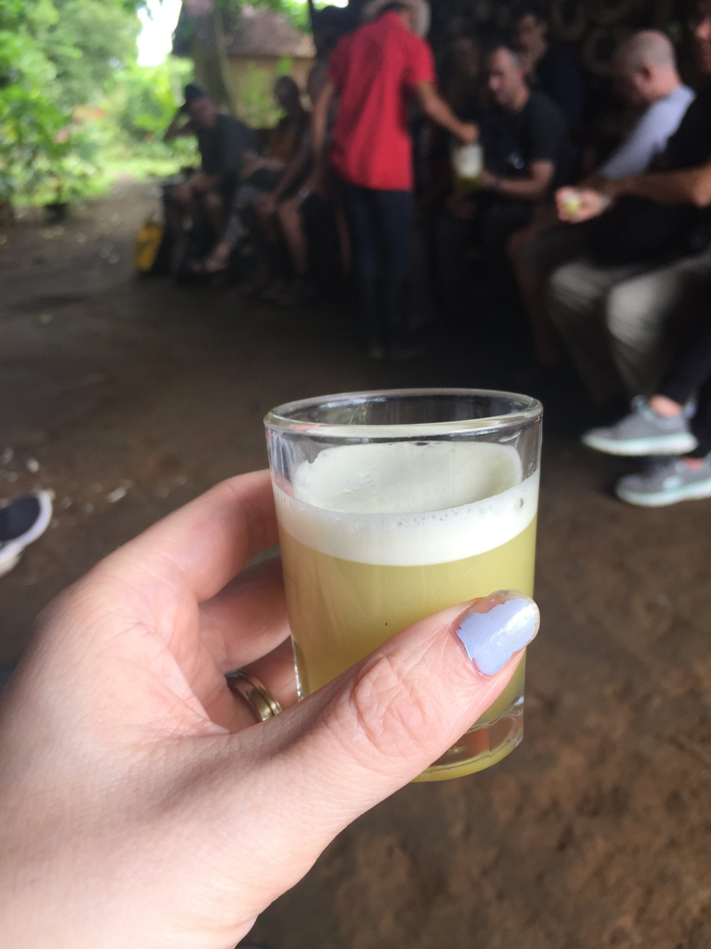 Drink made from sugar cane - A Brummie Home and Abroad - Living La Pura Vida in Costa Rica: A Wet Wednesday in Arenal