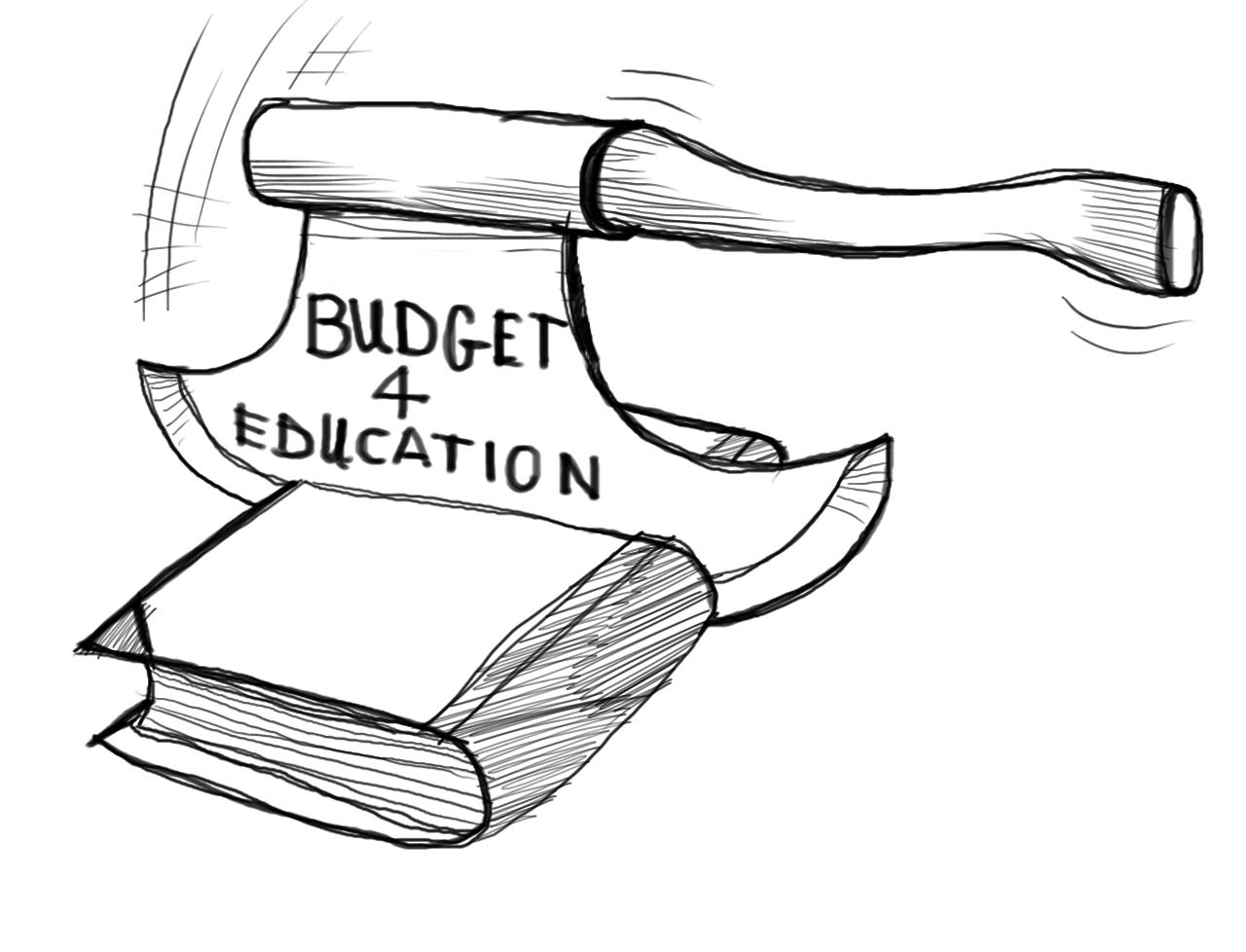 50pc education budget unused