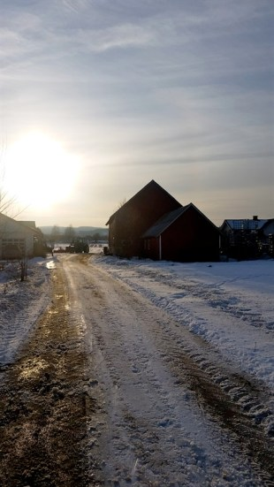 Late afternoon sun on the Korsmo farm.