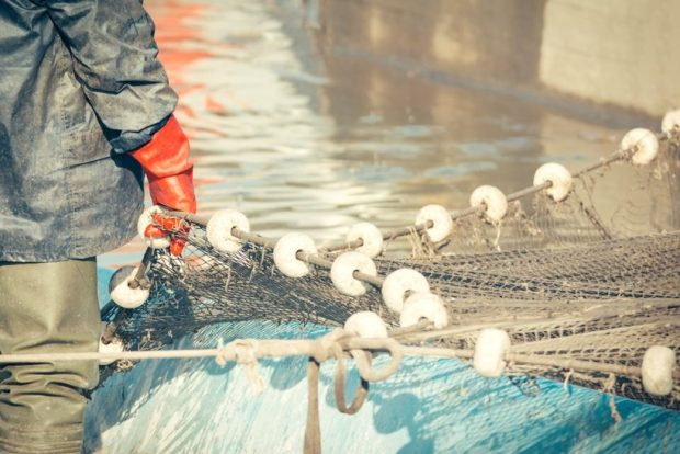 Research finds 'low trust' in fishery managers