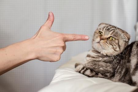 noir copine chatte belles femmes ayant le sexe anal