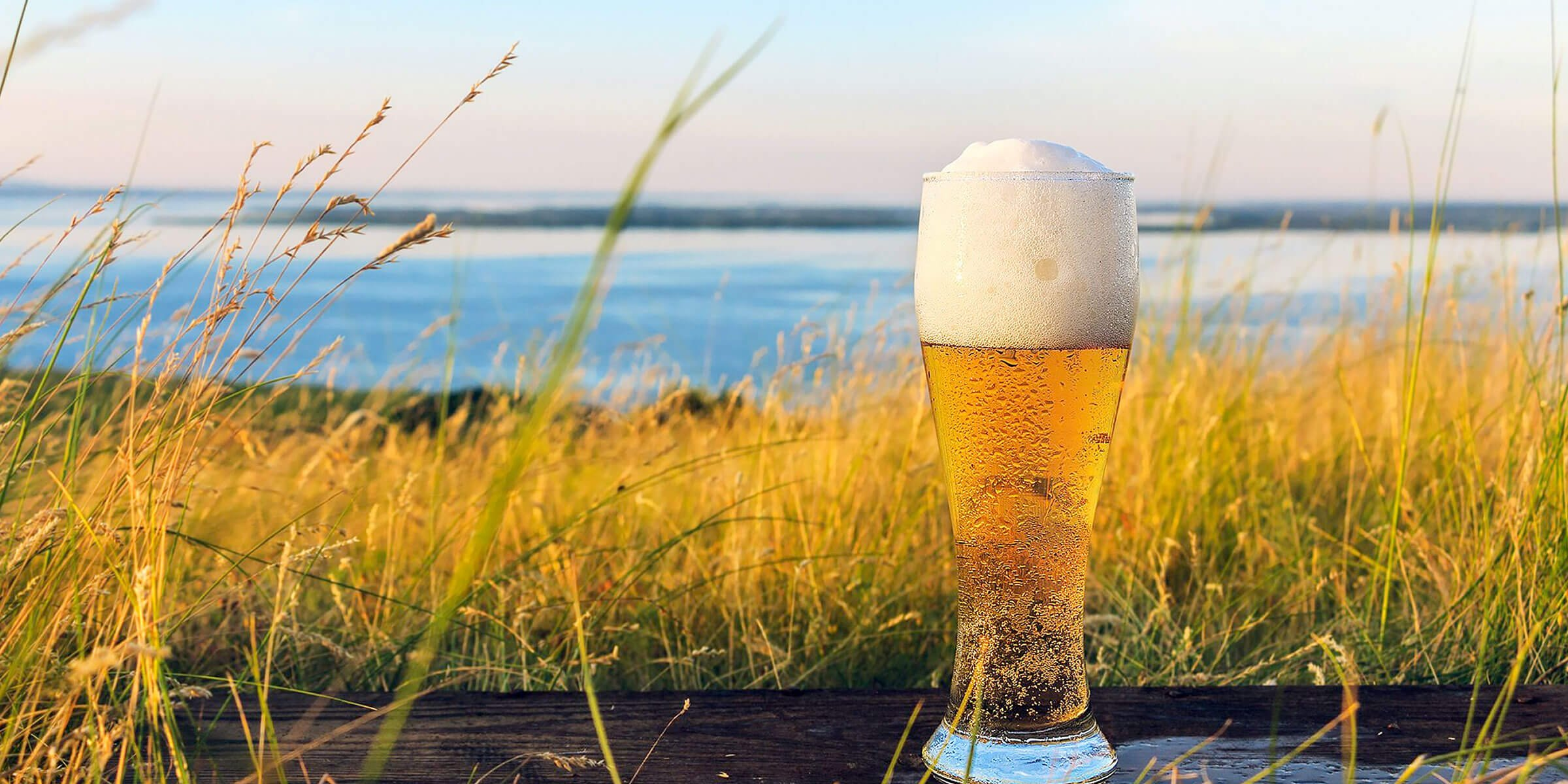 Pale golden beer with a frothy head atop a wooden plank beside a river and surrounded by tall grasses