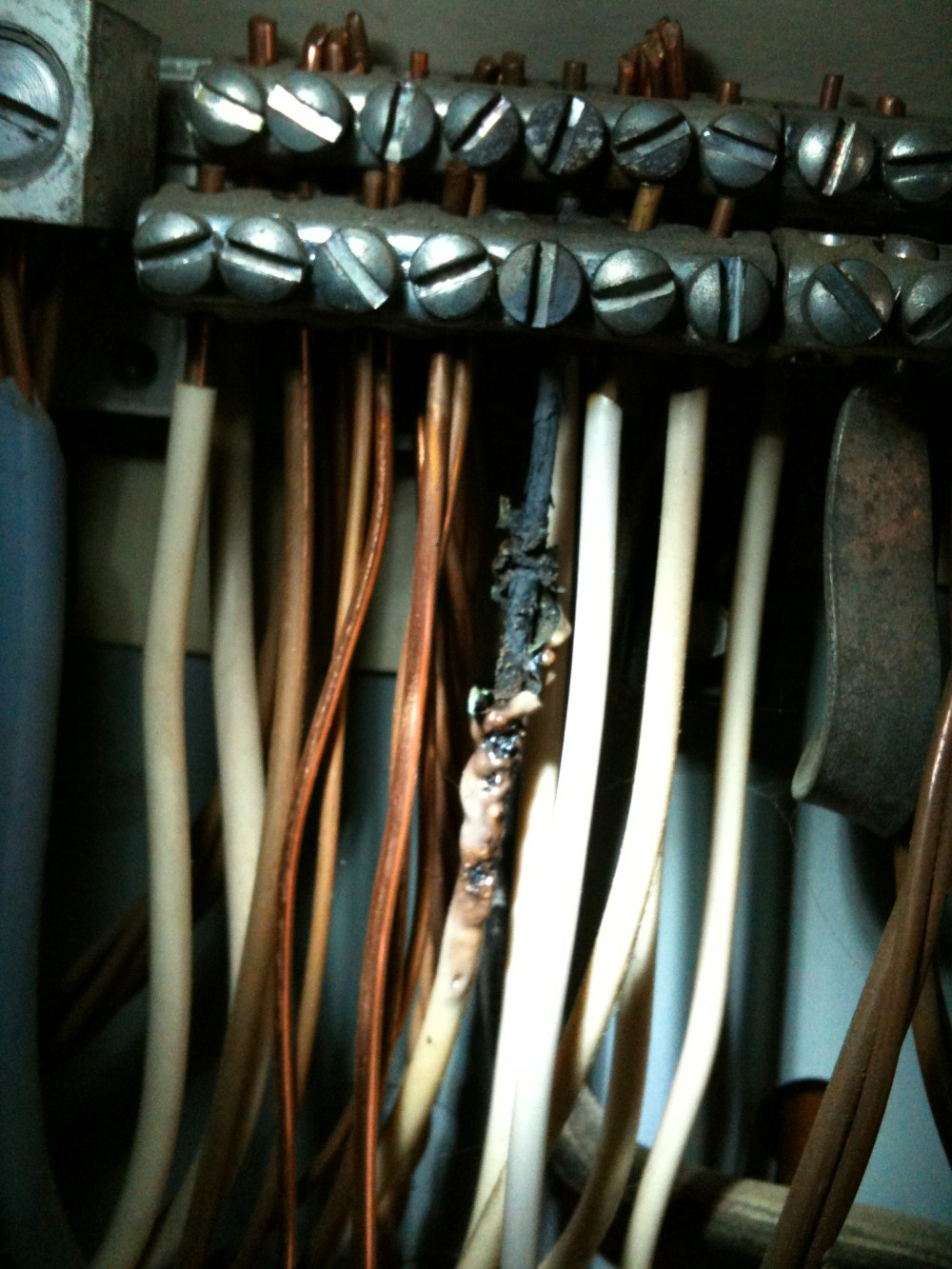 medium resolution of loose neutral under screw in the electrical panel photo of a white wire that has