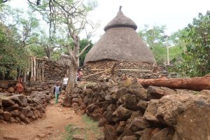 Konso Village. Learn about Konso's Cultural Landscape. Absolute Ethiopia