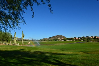 Image of a green golf course with two saguaro cacti and mountains in the background