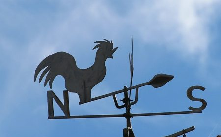 An image of a weather vane against a blue sky, a subtle hint that some types of weather brings more pests.