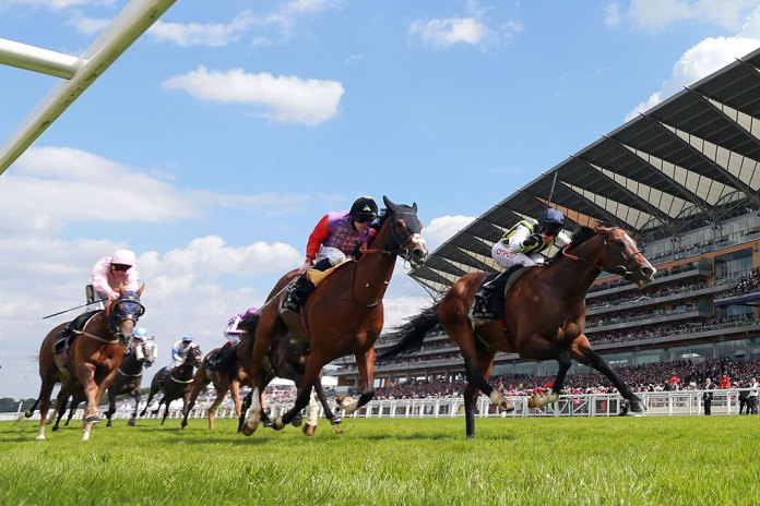 Summer Sporting Events: Horses, Hats and Henley